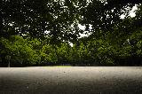 寂しい公園.jpg