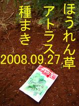 アトラス種まき.jpg