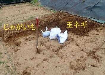 区民農園開始2−2020.03.07