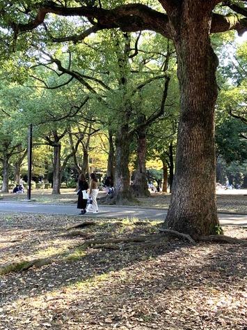 代々木公園2020.10.24