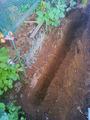 ネギ溝掘り2011.07.26