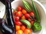 収穫2013.07.23