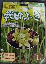 秋田フキ2010.04.14.jpg