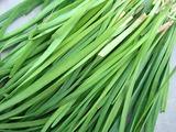 ニラ収穫09.04.20.jpg
