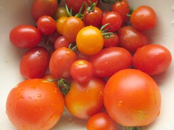 トマト2016.07.25
