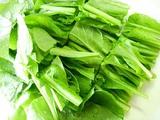 小松菜収穫09.04.26.jpg
