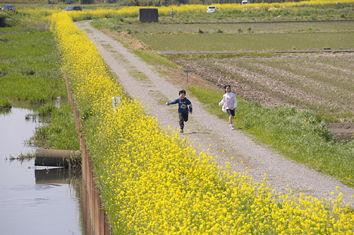 ��宴����障��������mochu2010.04.25
