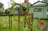 好きな場所2010.06.21.jpg