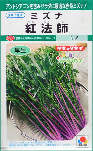 紫のミズナ2018.0129