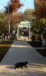 北の神社09.11.27.jpg