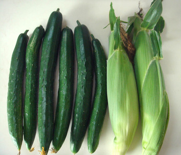 収穫 2020.07.08