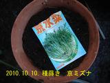 京ミズナ2010.10.10