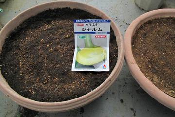 シャルム種蒔き2014.3.18.jpg