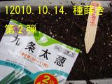 九条太ネギ第2弾2010.10.14