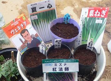 種蒔き2020.01.24