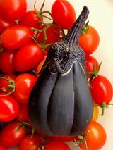 水茄子09.08.23.jpg