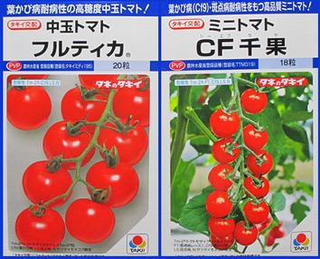 トマトの種2014.02.05.jpg