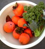 柿ブロッコリー06.10.30.