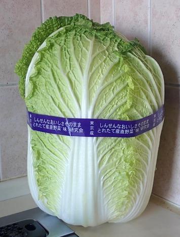 白菜購入2020.02.05