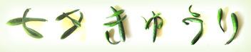 「七夕きゅうり」のタイトル画像