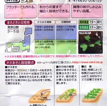 三太郎種-12018.12.25