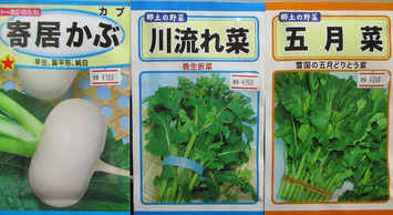 新潟の野菜2015.10.19