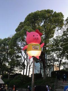 image3_jpegウルトラ豚