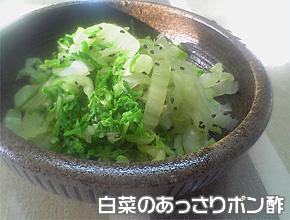 白菜のあっさりポン酢