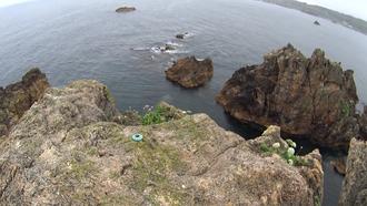 大岩海岸14
