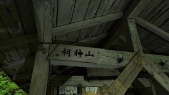 16-清水・燈明杉1 (19)