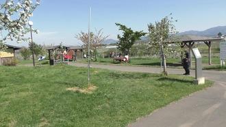 りんご公園11
