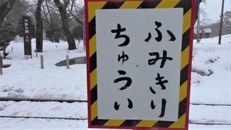 7-津軽ページェント3
