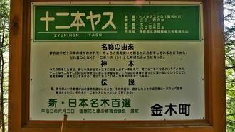 14-十二本ヤス (4)