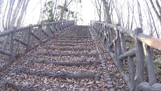 水神の森・水神の橋- 5