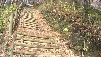 平川市民の森4