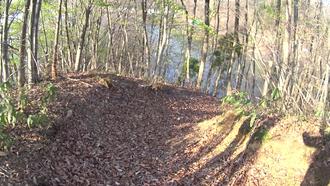 水神の森・水神の橋- 8