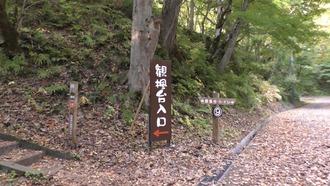もみじ山71