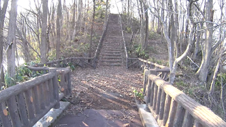 水神の森・水神の橋- 4