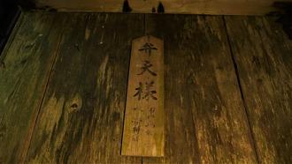 16-清水・燈明杉1 (50)