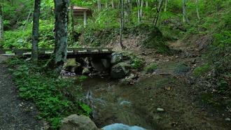 弥勒の滝 (13)