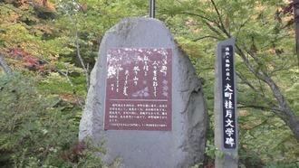 もみじ山35