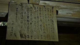 16-清水・燈明杉1 (45)
