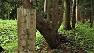 14-大石神社 (45)