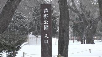 7-津軽ページェント4