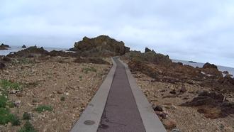 大岩海岸4