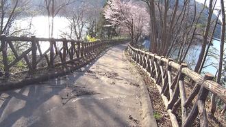 水神の森・水神の橋- 2