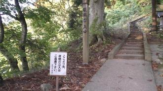 もみじ山60