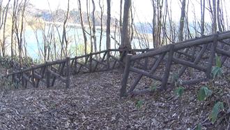 水神の森・水神の橋- 10