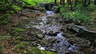 弥勒の滝 (9)
