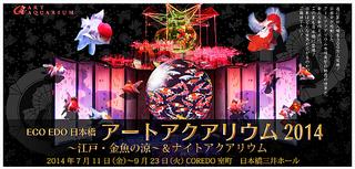 アートアクアリウム 2014 ~江戸・金魚の涼~ &ナイトアクアリウム @COREDO 室町